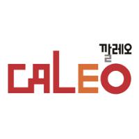 logo CALEO Infra s.r.o.