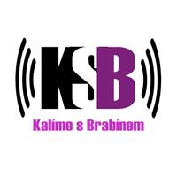 logo Ing. Jan Brabec
